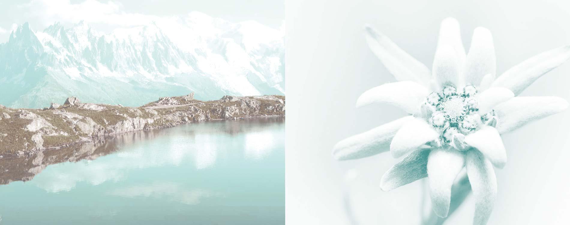 Alpine Kosmetik pro spa kosmetik kosmetikstudio imst